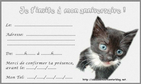 Carte Invitation Animaux Chats