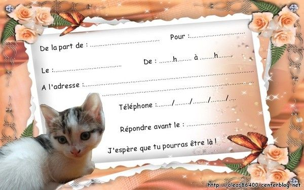 Exceptionnel carte invitation animaux chats SS93